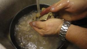 Recette de Rognon de veau préparation