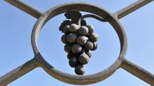 Vignobles Chantonnet Grappe en pierre