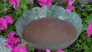 Recette de Mousse au chocolat à la crème Anglaise